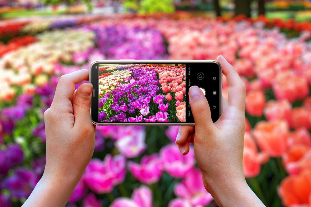 Virágzó Kiskőrös - fotópályázat