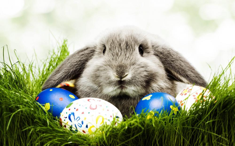Bűnmegelőzés húsvétkor