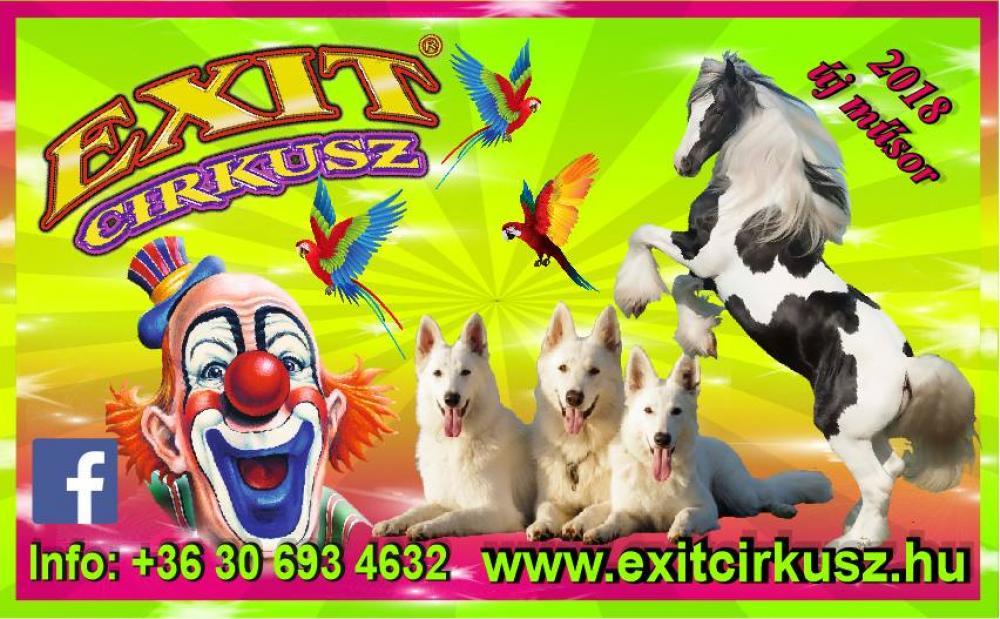 Kész cirkusz - az Exit Cirkusz Kiskőrösön
