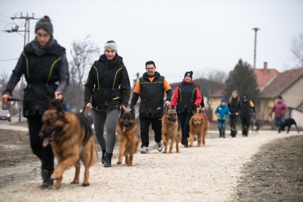 Kiskőrösi Kutyaiskolások kilátogattak a záportározó tóhoz és példát mutattak társadalmi munkájukkal